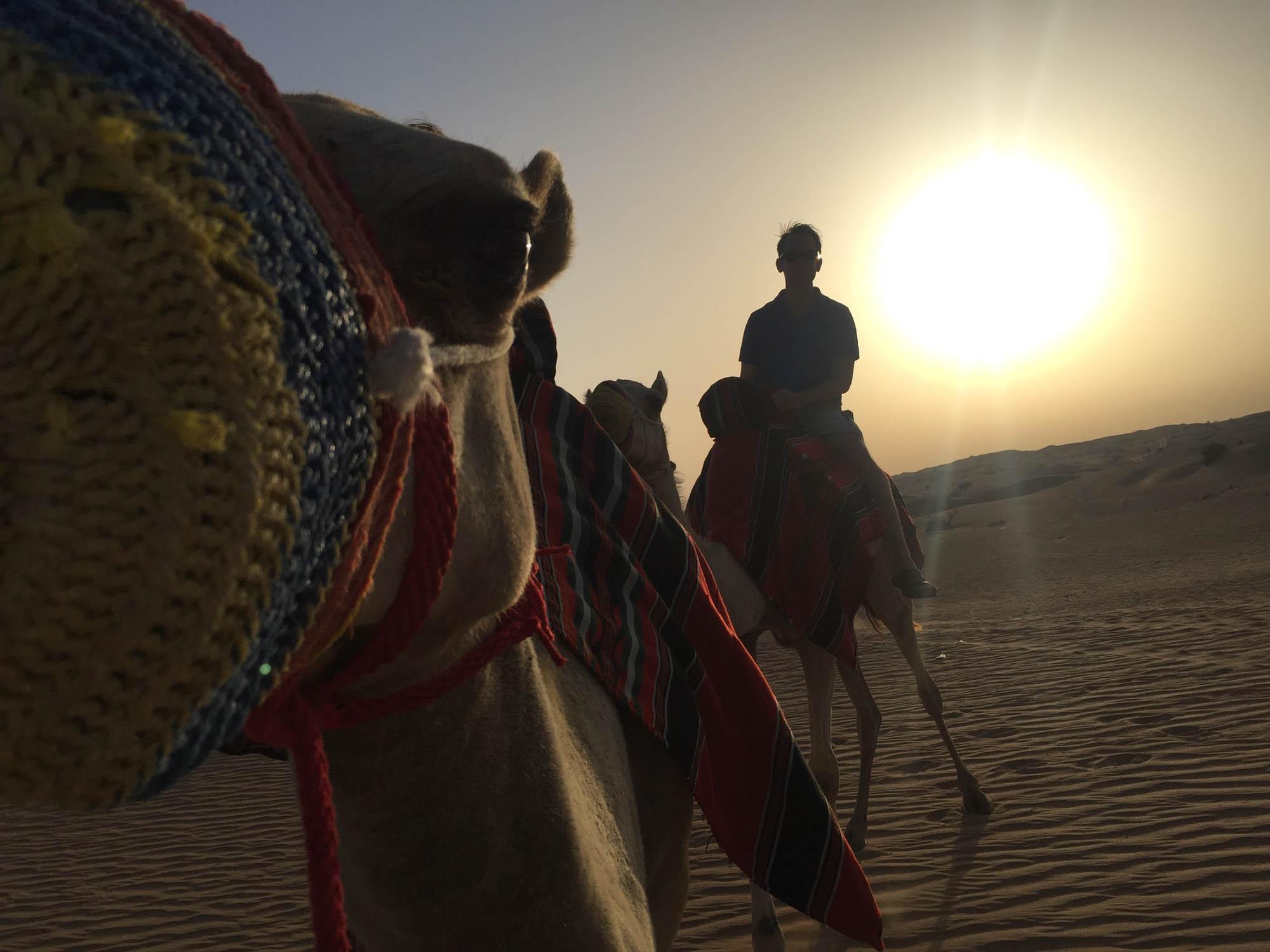 Ökensafari med Knight Tours i Dubai