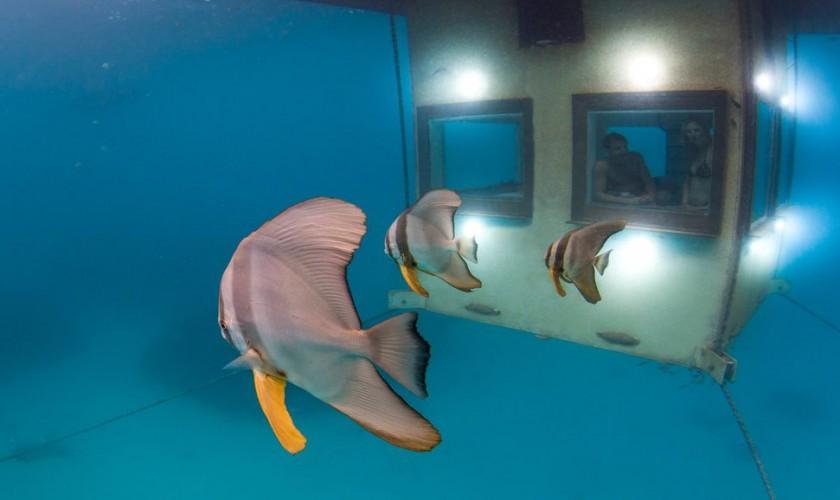 Underwater-1-1024×578