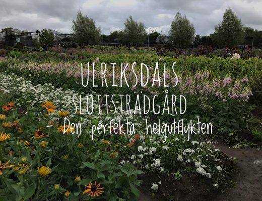 Ulriksdals slottsträdgård