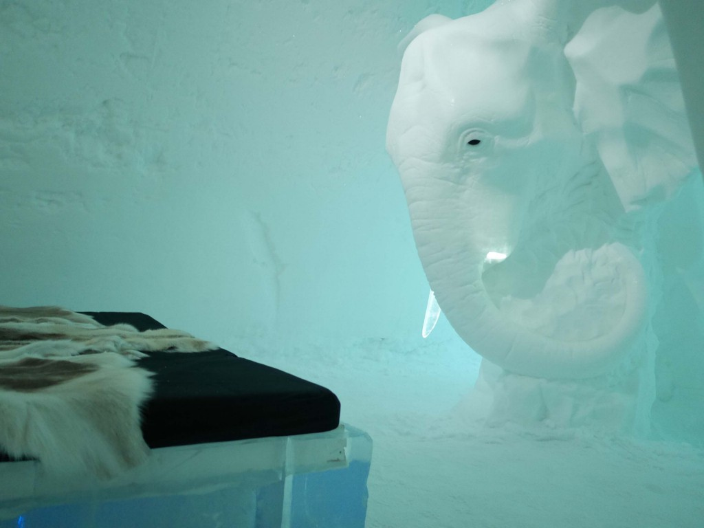"""Elephant in the room"" av Annasofia Mååg"
