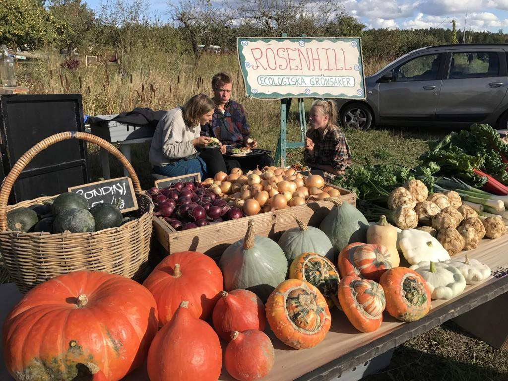 Grönsaker Rosenhill