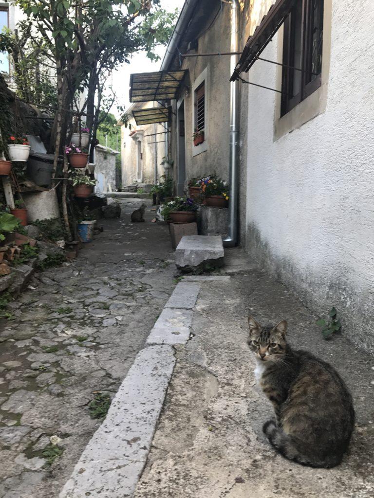 Kastav Kroatien