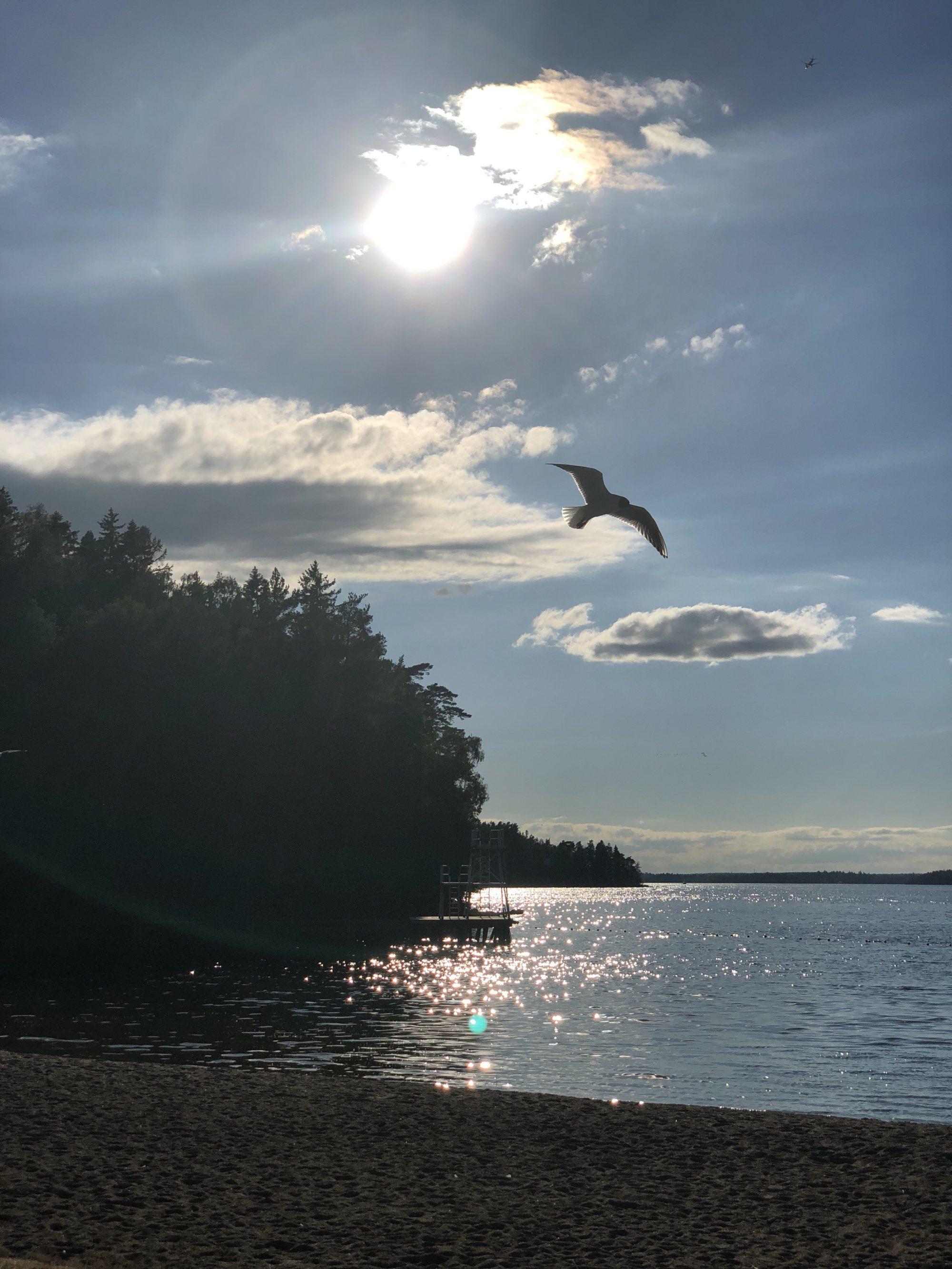 Fågelöuddebadet på Lidingö
