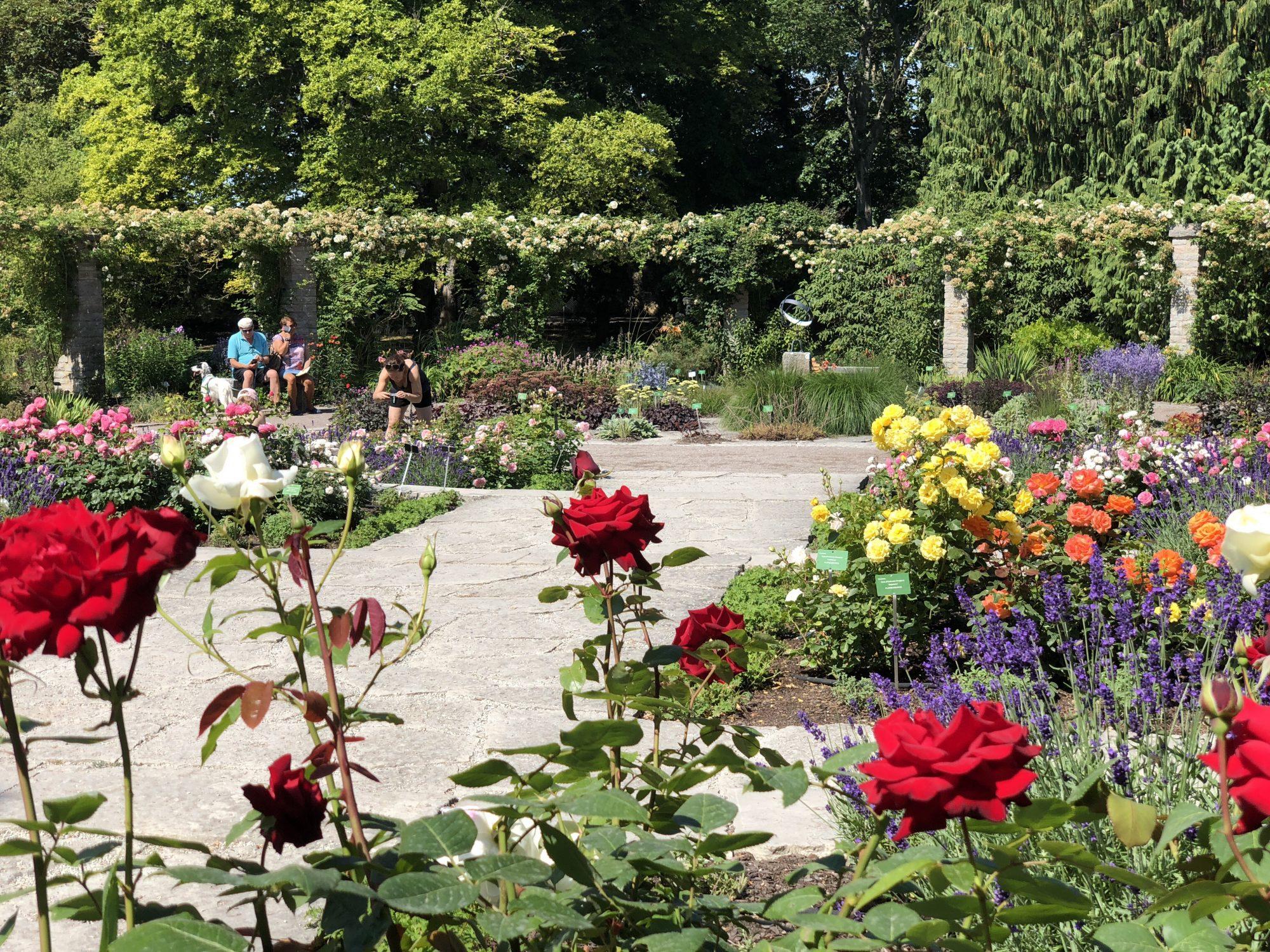 Botaniska Trädgården Visby