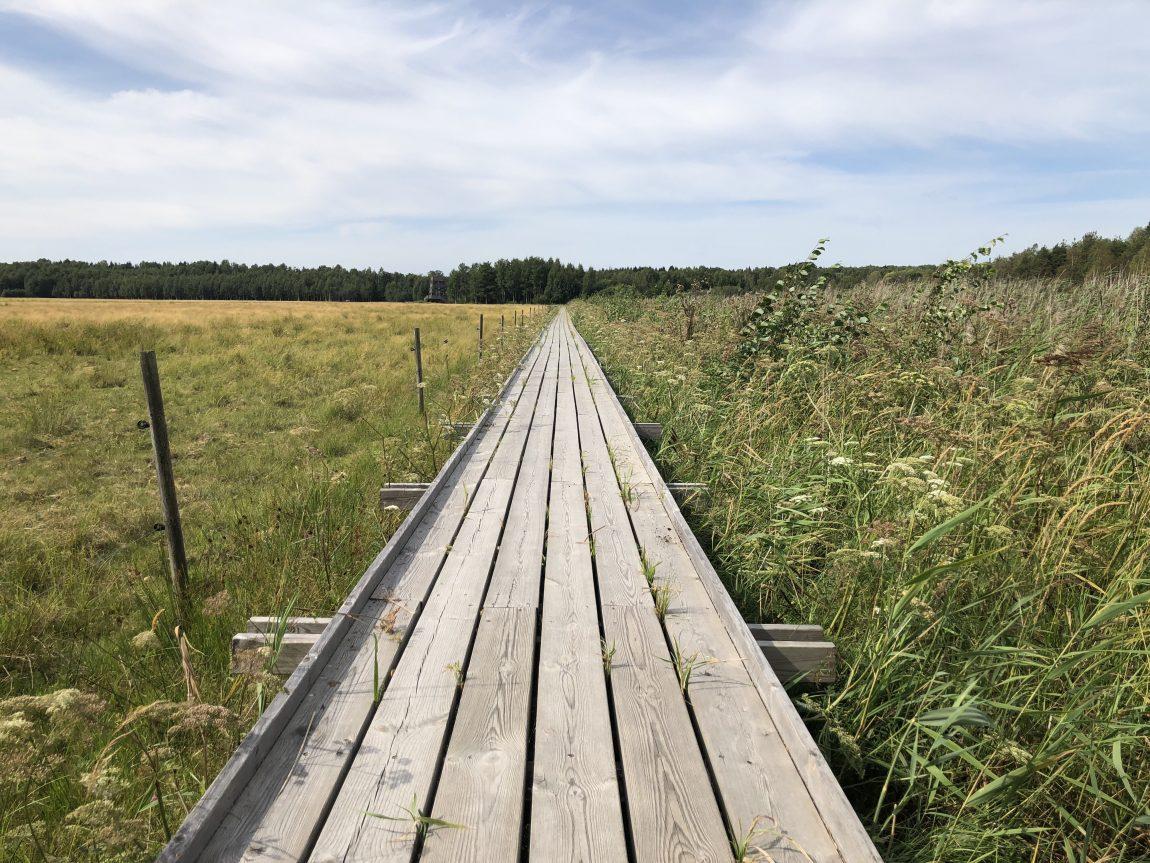 Mariebergsskogen i Karlstad