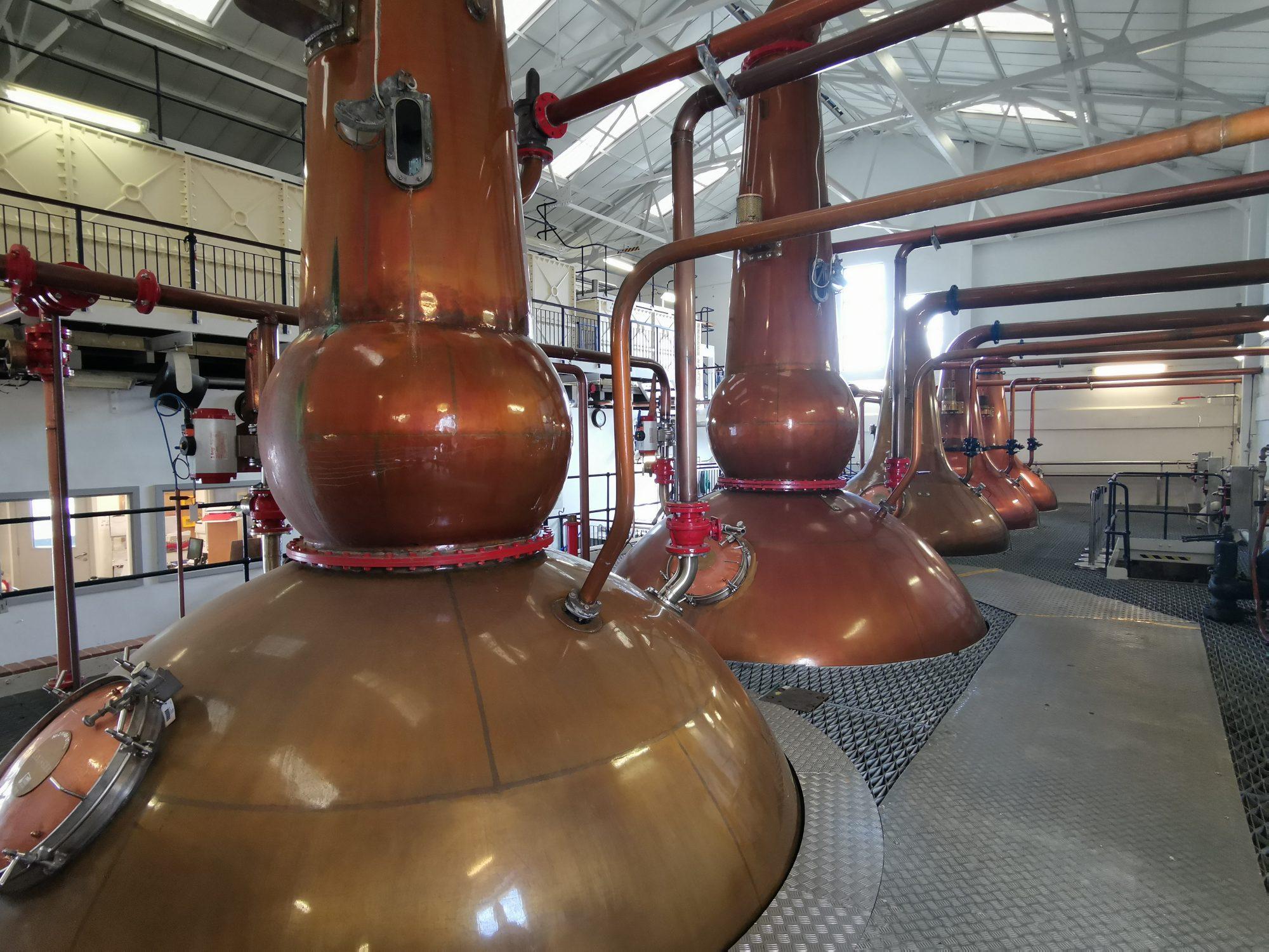 Guidad tur påTalisker Distillery