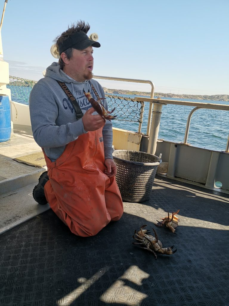Krabb- och kräftfiske