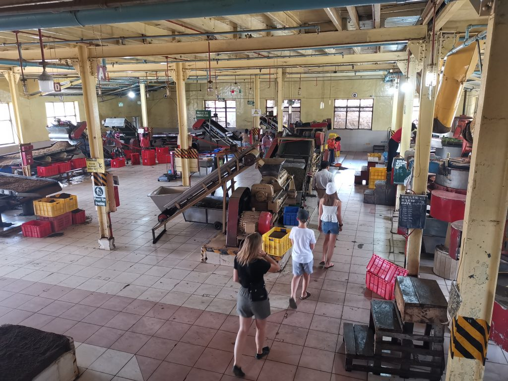 Besök på en tefabrik