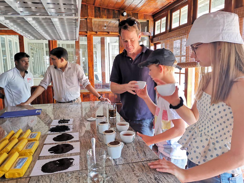 Teprovning på tefabriken