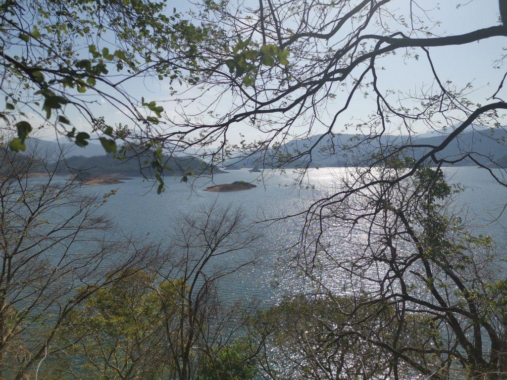 En av alla 3000 konstgjorda sjöar i Sri Lanka