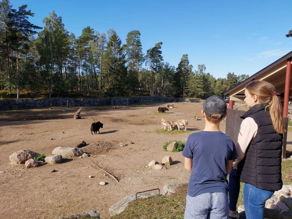 Weekend på Kolmården i Djurparken