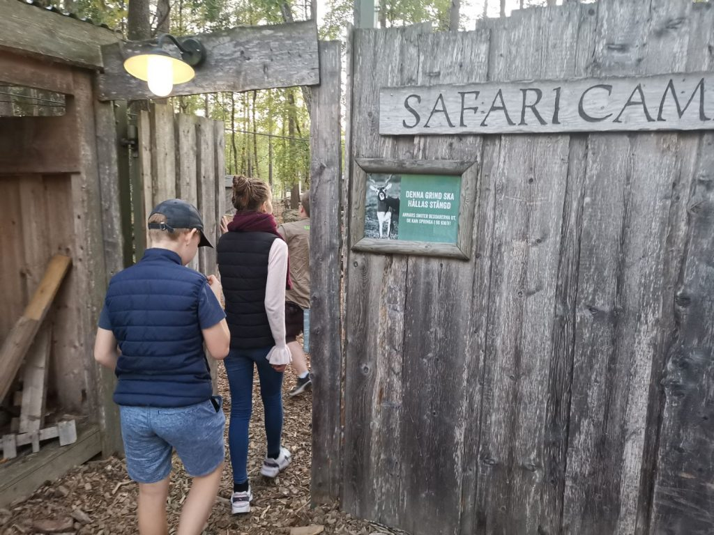 Safari Camp på Kolmården