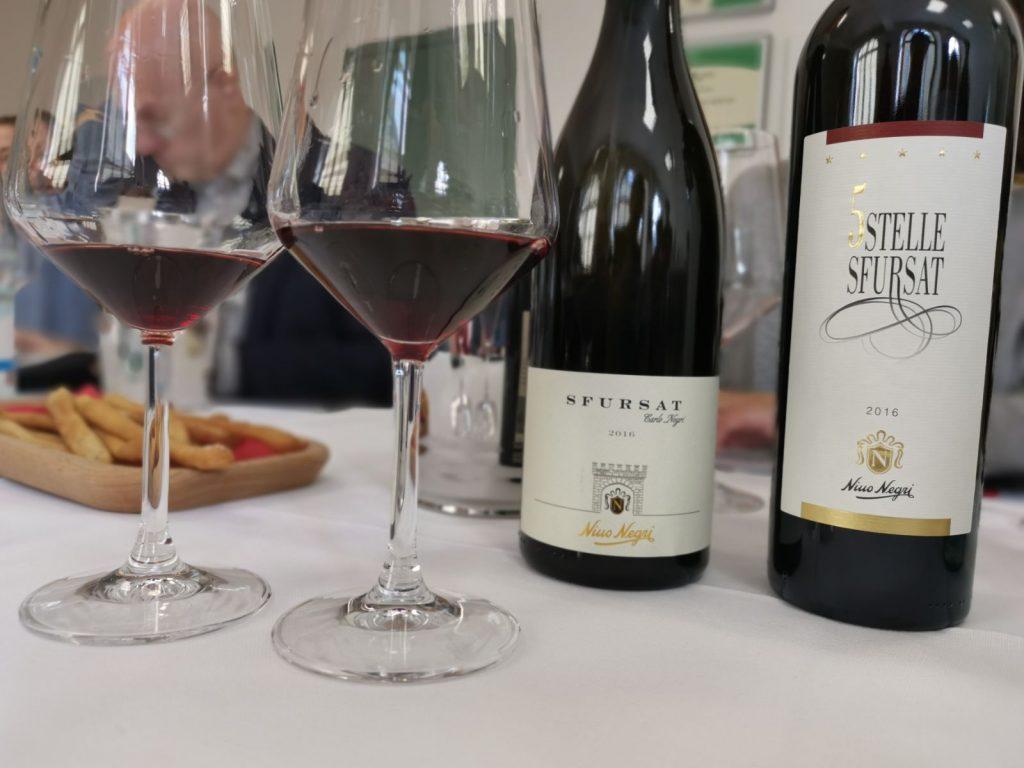 Vinprovning hos Nino Negri