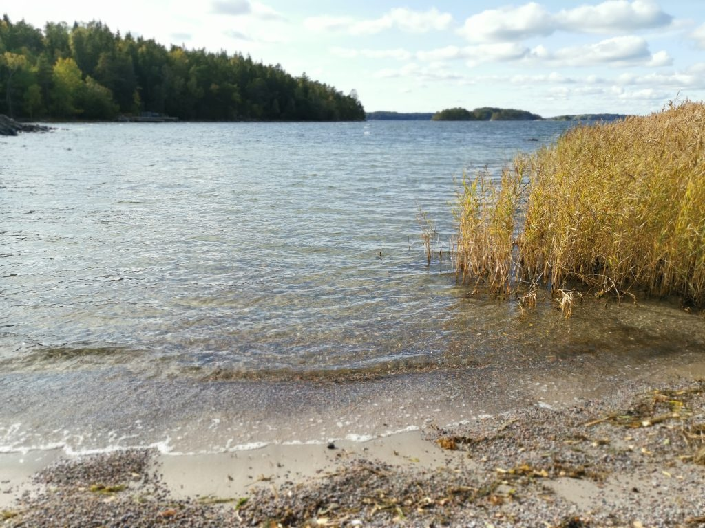 Privat bastu och bad i havet