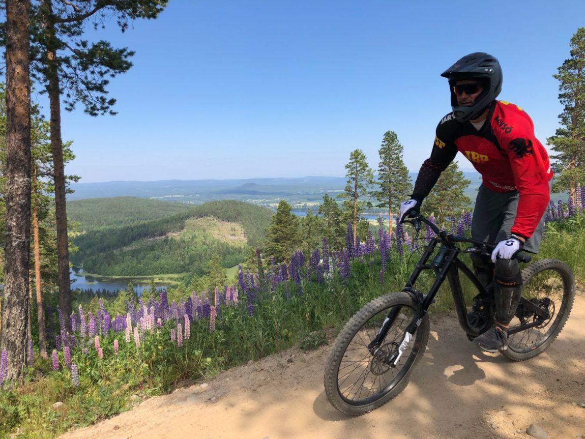 Bike parks i Sverige