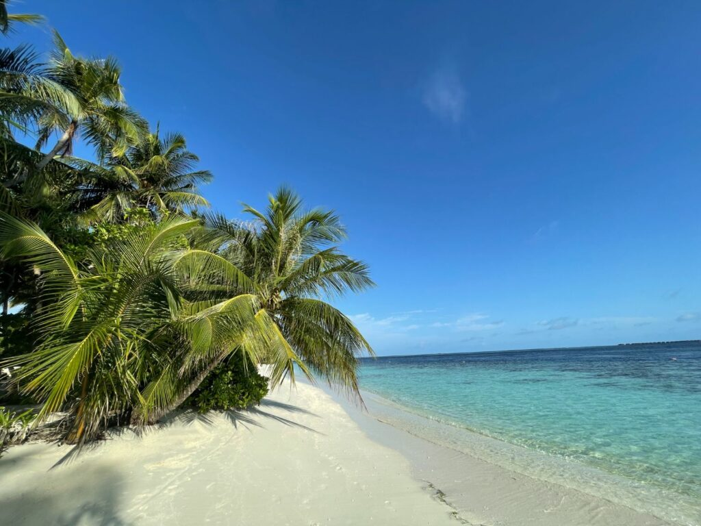 Vilamendhoo island resort & spa i Maldiverna