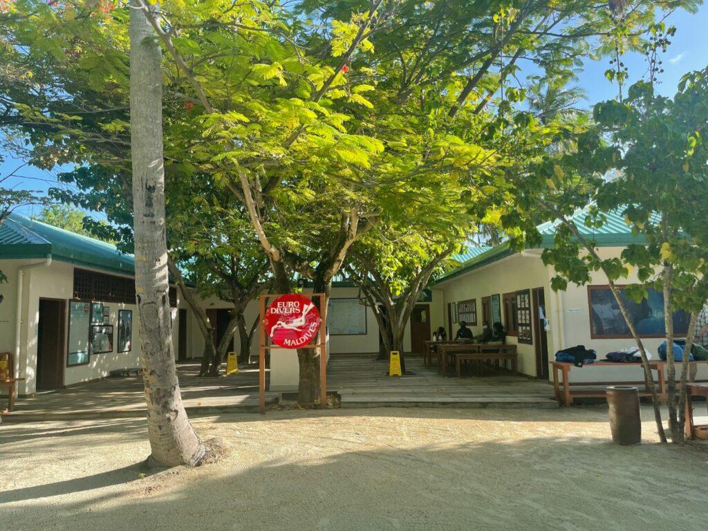 Diving Vilamendhoo island resort & spa i Maldiverna