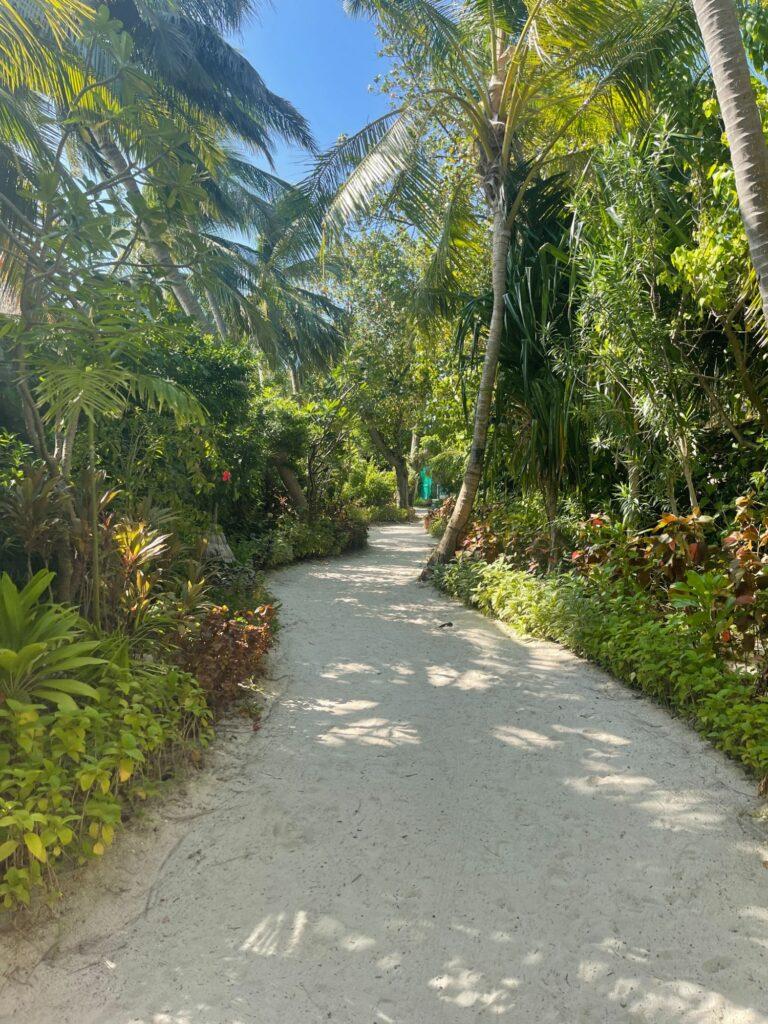 Veligandu Island Resort & Spa i Maldiverna